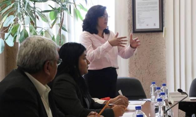 Protocolo de Intervención de Trabajo Infantil contempla la denuncia ciudadana
