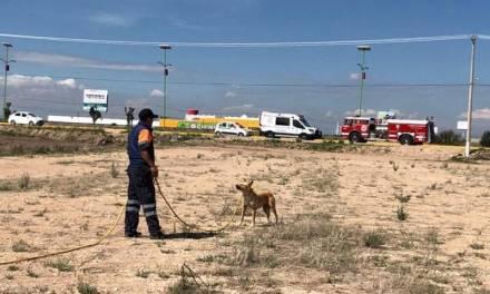 Autoridades de Zapotlán niegan existencia de fosas clandestinas en Acayuca
