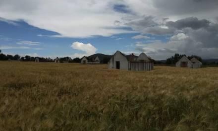 Hacienda los Olivos, 150 años de tradición