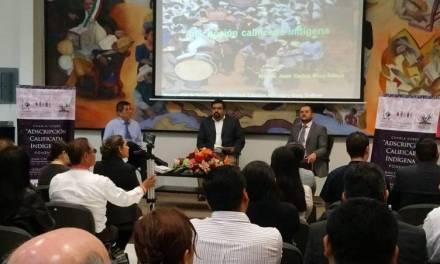 Partidos deberán presentar documentos probatorios para candidaturas indígenas