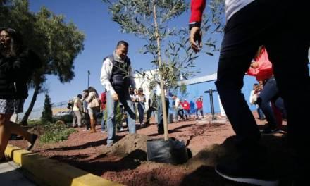 Coparmex y Oxxo se unen para reforestar