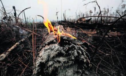 Bolsonaro aceptará ayuda para El Amazonas si el presidente de Francia se disculpa