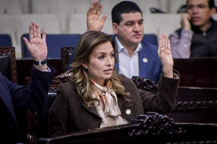 Casos como el de Areli Maya, a veces generan diferencias: Luis Hernández