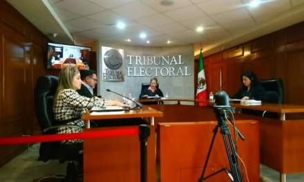 PAN debe aplicar la justicia partidaria interna en caso Areli Maya, determinó TEEH