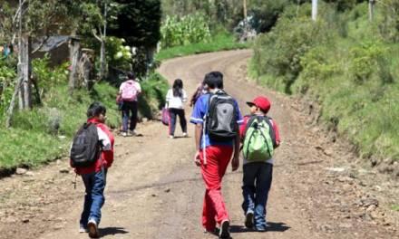 Piden mayor seguridad para estudiantes de primaria del Hiloche