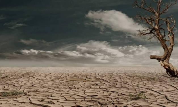 Alerta en Chile por la peor sequía de su historia