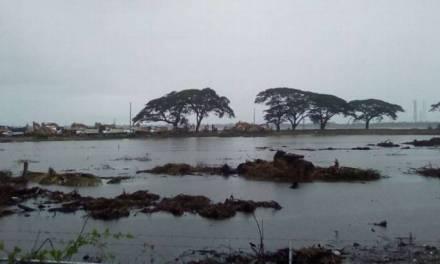 Se inunda terreno donde se construirá Refinería Dos Bocas