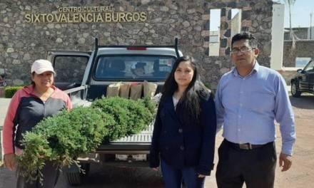 Villa de Tezontepec promueve programas amigables con el medio ambiente
