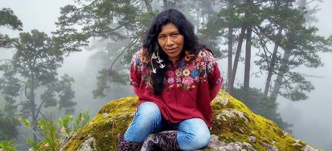 Lleva una semana desaparecida la defensora de bosques Irma Galindo