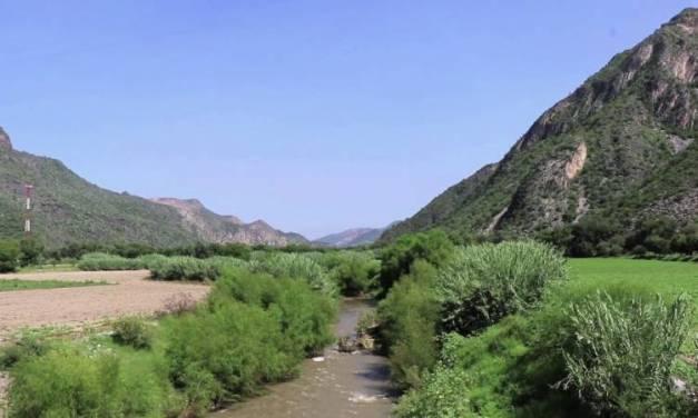 Hay cuatro predios en el estado en espera de ser declarados como área natural protegida