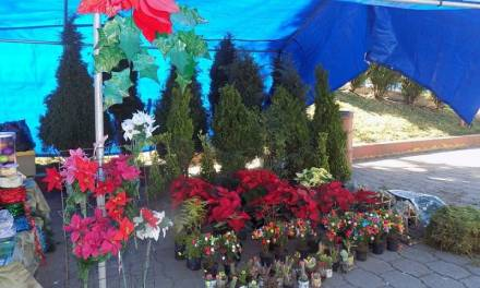 Impulsan economía local con un mercado navideño en Santiago Tulantepec