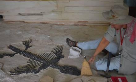 Necesario conocer de paleontología para emprender acciones ambientales