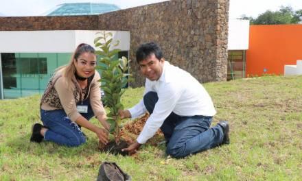 Universidad Intercultural busca certificarse en Sistemas de Gestión Ambiental