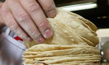 Se mantiene estable el precio de tortillas, informa Odeco