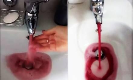 En Italia cayó vino en vez de agua, en los grifos de las viviendas