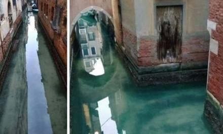 Agua de Venecia luce sin contaminación por nula presencia de personas ante pandemia