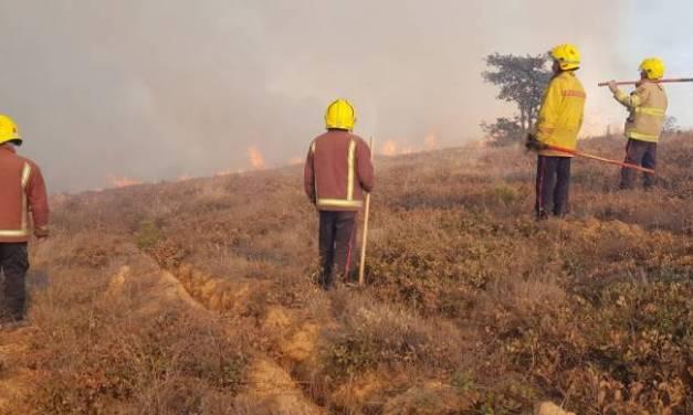 Ayuntamiento de Tulancingo apoyará a familia de bombero que falleció al combatir incendio