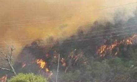 Continúan labores para mitigar incendio en Nicolás Flores