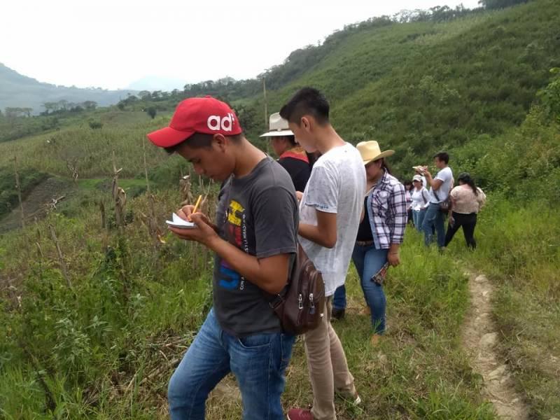 UICEH oferta licenciaturas que contribuyan al cuidado del medio ambiente