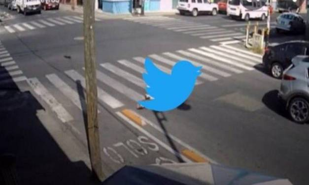 Volvió a caerse Twitter; reportan fallas en la red social