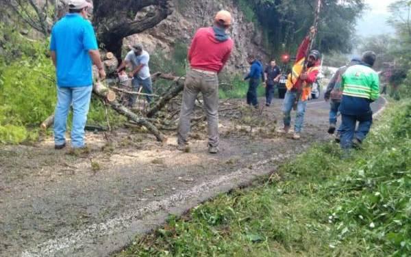 Sopot realiza acciones de limpieza en red carretera estatal